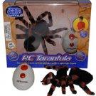 Radio controlled spider
