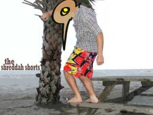 shredda shorts