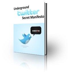 Twitter Secret Manifesto - ebook