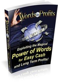 Words to Profit - ebook