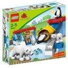 LEGO Dulpo-5633 Polar Zoo