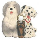 Dalmatian Dog Doorbell Door Bell Sheepdog Yorkie Illuminated Belgian Griffon WOF