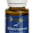 WINTERGREEN - 15 ML