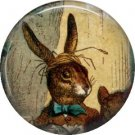 March Hare, Classic Alice in Wonderland 1 Inch Button Badge Pin - 0063
