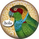 Hola, Talking Birds 1 Inch Button Badge Pin Back - 4001