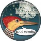 Good Evening, Talking Birds 1 Inch Pinback Button Badge Pin - 4014