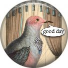 Talking Birds 1 Inch Pinback Button Badge Pin - 4016