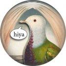 Talking Birds 1 Inch Pinback Button Badge Pin - 4021