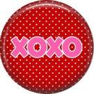Wild Love Valentine's Day 1 Inch Pinback Button Badge Pin - 2134