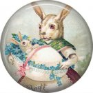 Bunny Holding Baby in Egg, Vintage Easter Image on 1 Inch Button Badge Pin - 0140