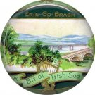 A Bit of Irish Sod, 1 Inch Ephemera Lapel Pin, St. Patricks Day Button Badge  - 0438