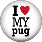 I Love My Pug, Dog is Love 1 Inch Pinback Button Badge Pin - 6130