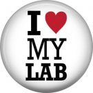 I Love My Lab, Dog is Love 1 Inch Pinback Button Badge Pin - 6139