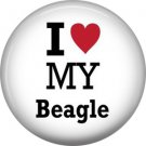 I Love My Beagle, Dog is Love 1 Inch Pinback Button Badge Pin - 6143