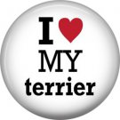 I Love My Terrier, Dog is Love 1 Inch Pinback Button Badge Pin - 6146