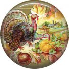 Turkey with Fruit and Acorns, 1 Inch Pinback Button Badge Pin of Vintage Thanksgiving Image - 0329