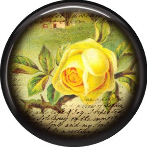 Yellow Rose, 1 Inch Pinback Button Badge Pin - 0234