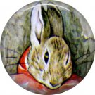 The Tale of Peter Rabbit 1 Inch Pinback Button Badge Pin - 6228