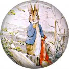 The Tale of Peter Rabbit 1 Inch Pinback Button Badge Pin - 6229
