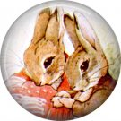 The Tale of Peter Rabbit 1 Inch Pinback Button Badge Pin - 6235