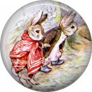 The Tale of Peter Rabbit 1 Inch Pinback Button Badge Pin - 6237