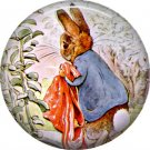 The Tale of Peter Rabbit 1 Inch Pinback Button Badge Pin - 6238