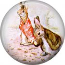 The Tale of Peter Rabbit 1 Inch Pinback Button Badge Pin - 6239