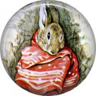 The Tale of Peter Rabbit 1 Inch Pinback Button Badge Pin - 6241