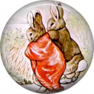 The Tale of Peter Rabbit 1 Inch Pinback Button Badge Pin - 6245