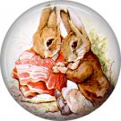 The Tale of Peter Rabbit 1 Inch Pinback Button Badge Pin - 6247