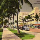 Miami Beach Florida Postcard, Lincoln Road Shopping District, Full Color c.1953