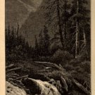 J.D. Woodward Print, Cedar Creek in Blue Cañon c.1877