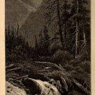 J.D. Woodward Print, Cedar Creek in Blue Cañon c.1877