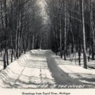 Rapid River Michigan Postcard, Wooded, Snowy Road c.1951