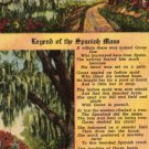 Florida Landscape Postcard, Legend of the Spanish Moss, Full Color c.1953
