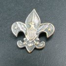 Boy Scouts of America Pin, Eagle with Shield, Stars & Fleur de Lis c.1911