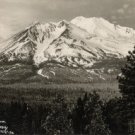 California Postcard, Mt. Shasta from Pacific Highway c.1949