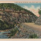 Cleveland Tennessee Postcard, Flume Line on Water Level Route c.1936