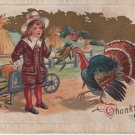 Thanksgiving Postcard, Child Feeding a Turkey Corn, Full Color & Embossed c.1911