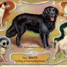 White Sewing Machine Company Giveaway, Dog Breeds Ad Card c.1897