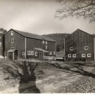 Downsville N.Y. Barns, Trees & Catskills, Near Pepacton Reservoir c.1949