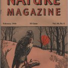 Nature Magazine, Red-Tailed Hawk, Orange Hexom Cover c.1946