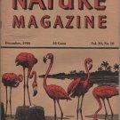 Nature Magazine, Flamingos, Pink Hexom Cover c.1946