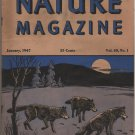 Nature Magazine, Timber Wolves, Blue Hexom Cover c.1947