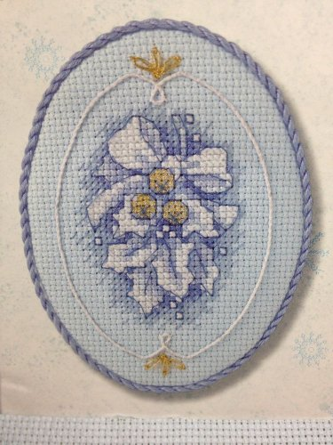 Creative Accents Holly Houx Cross Stitch Kit Martha Freeman Glass Frame Blue