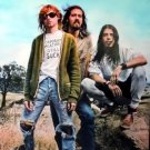 Nirvana group poster on hill 23.5 x 34 aqua bkgrnd Kurt Cobain SHIP FROM USA