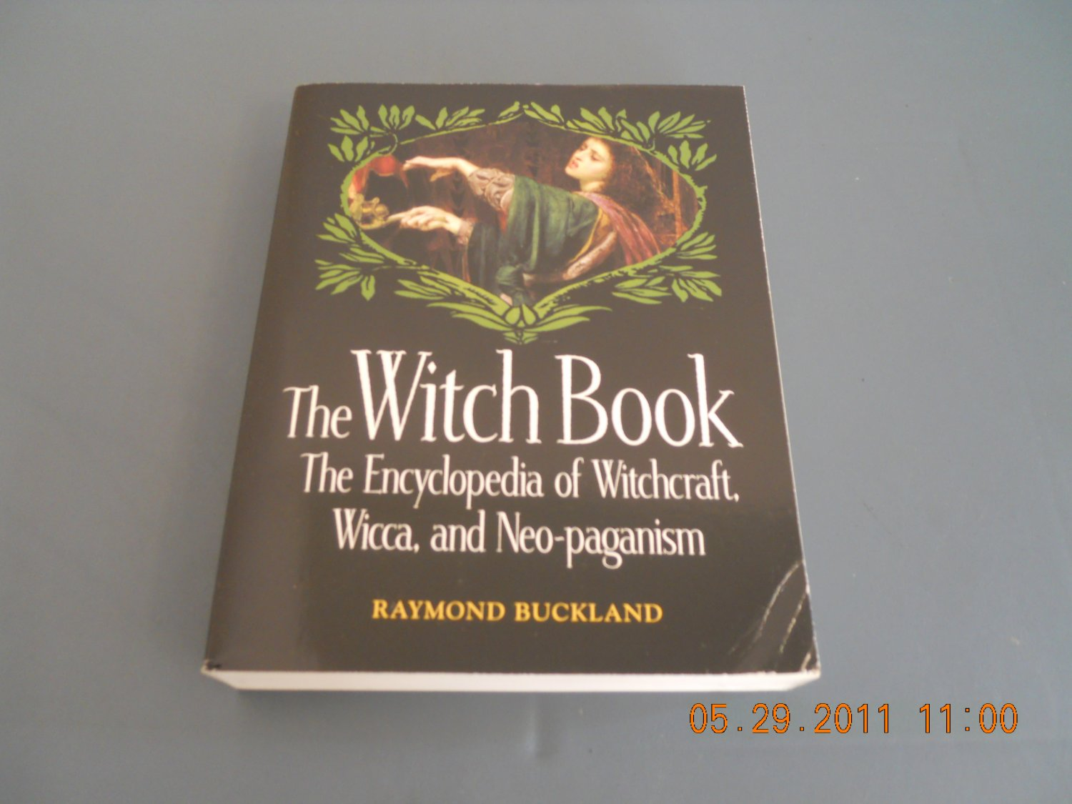 The Witch Book The Encyclopedia of Witchcraft, Wicca, and Neo-Paganism paperback