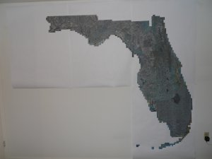 Huge - wall size or bigger - aerial image of Florida - 8' x 9'