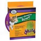 Vita - greens Plastic Bowl & Grass Combo