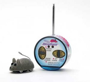 Remote Controlled Micro Mouse In Dome Package